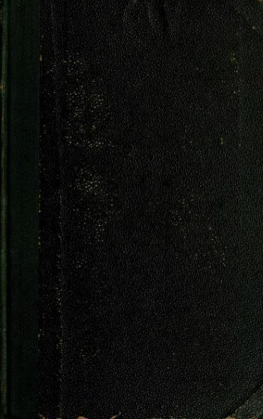File:Pestmegye és tájéka viránya (1879).djvu