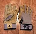 Petzl Cordex Gloves.jpg