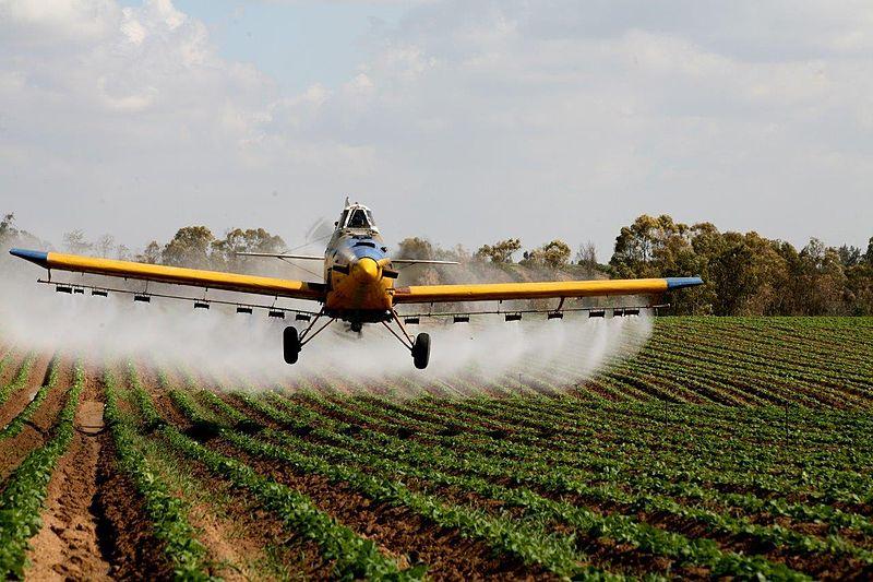 מטוס ריסוס בשטח תפוחי אדמה