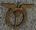 Pilotni.Odznak.CS.peruti.RAF.jpg