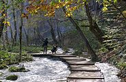 Plitvice Lakes National Park BW 2014-10-13 12-55-11 DMix.jpg