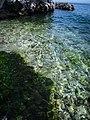 Pon Farr 026 - panoramio.jpg
