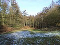 Pottal Valley - geograph.org.uk - 676212.jpg