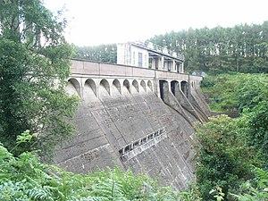 Poulaphouca - Pollaphuca dam