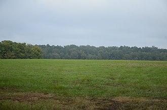 Camden Expedition Sites National Historic Landmark - Image: Prairie De Ann Battlefield