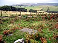 Prehistoric Cup and Ring marked rock south of Whittondean - geograph.org.uk - 1146572.jpg
