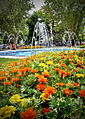 Primavera en la plaza..jpg