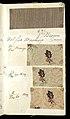 Printer's Sample Book, No. 19 Wood Colors Nov. 1882, 1882 (CH 18575281-39).jpg