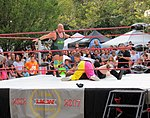 Provo wrestling (25362050008).jpg