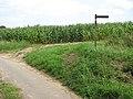 Public footpath to Low Farm - geograph.org.uk - 1431059.jpg