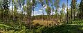 Pustlaukio duobė (panorama).jpg