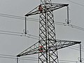 Pylon Maintenance Work - geograph.org.uk - 1423399.jpg