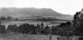 Queensland State Archives 4098 Wheatfields Yangan Valley Darling Downs c 1930.png