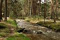 Río Eresma (2 de mayo de 2015, parque natural Sierra Norte de Guadarrama) 03.jpg