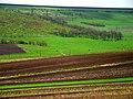 R59, Moldova - panoramio (6).jpg
