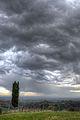 Rain Coming In - Montericco, Albinea, Reggio Emilia, Italy - November 6, 2012 06.jpg