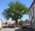 Rathaus und Cafe Willenbacher in Enkenbach (Hans Buch).jpg