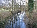 Reflection on the River Wylye - geograph.org.uk - 111091.jpg
