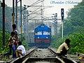 Reluctance - Flickr - Dr. Santulan Mahanta.jpg