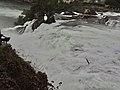 Rhine Falls, Zurich (Ank Kumar) 08.jpg