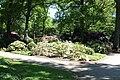 Rhododendronpark Bremen 20090513 143.JPG