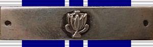 Southern Cross Medal (1975) - Southern Cross Medal and Bar