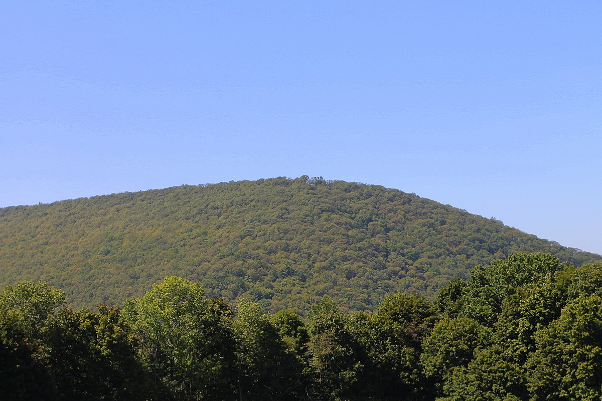 Coal Township Northumberland County Pennsylvania Wikipedia
