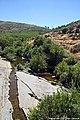 Rio Mondego - Portugal (28749337142).jpg