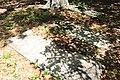 River Creek WMA cemetery 3.jpg
