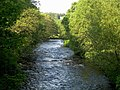 River Doon - geograph.org.uk - 822074.jpg