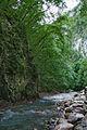 River Mali Rzav and Visocka Banja Spa in Serbia - 4283.NEF 22.jpg