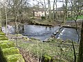 River Tame at Uppermill - geograph.org.uk - 1193736.jpg