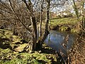 River Teign at Chudleigh Knighton - geograph.org.uk - 1172160.jpg
