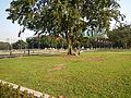 RizalParkjf8373 20.JPG