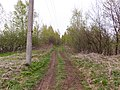 Road - panoramio (138).jpg