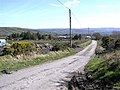 Road at Carnoughter - geograph.org.uk - 391279.jpg
