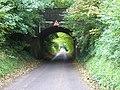 Road goes under disused railway bridge near Cocking - geograph.org.uk - 996185.jpg