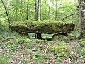 Rochefort-sur-la-Côte (Haute-Marne) dolmen du bois de la Grande Bay (01).jpg