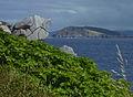 Rocher, figuier et île de Coelleira depuis O Porto de Bares.jpg