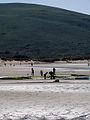 Rocky area of Broughton Beach - geograph.org.uk - 217374.jpg