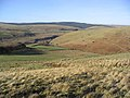 Rough grazing on Meg's Hill - geograph.org.uk - 328325.jpg