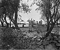 Royal Air Force- Italy, the Balkans and South-east Europe, 1942-1945. CNA1185.jpg