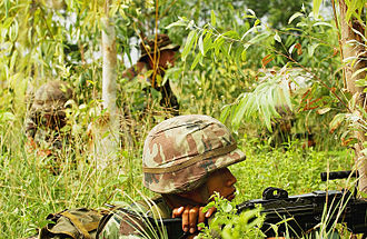 Royal Thai Armed Forces - Thai and US Army Soldiers practice tactical manoeuvres during exercise Cobra Gold 2006 in Lop Buri.