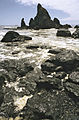 Ruby Beach, Olympic National Park, Washington State, 1992.JPG