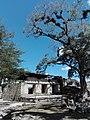 Ruinas MAYA Copan Honduras 06.jpg