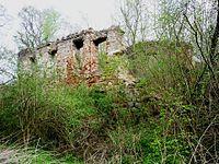 Ruins of palast in Dębowy Gaj.JPG