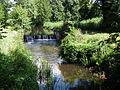 Ruisseau des Epeaux (3).JPG