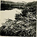 Rural sanitation in the tropics - being notes and observations in the Malay Archipelago, Panama and other lands (1915) (14582569697).jpg