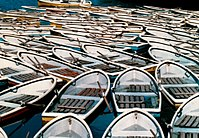 Rush of rental boats in Inokashira Pond, Tokyo, Japan, circa 1980s-1990s (by Jun Shiraishi @Photozou 171736929).jpg