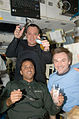 STS-119 Day 9 Akaba Arnold and Lonchakov.jpg